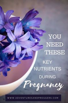 You Need These Key Nutrients During Pregnancy Pregnancy Nutrition, Pregnancy Health, Pregnancy Workout, Pregnancy Information, Pregnancy Advice, Help Getting Pregnant, Future Mom, Postpartum Care, Pregnant Diet