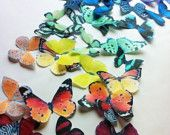 Sugar Root - Etsy - Edible printed sugar pieces- source for butterflies from Arwen's fourth birthday
