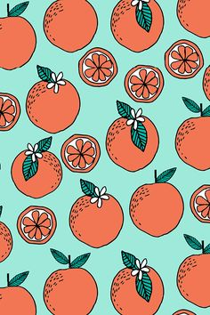 florida citrus fruits summer blue orange food kids tropical citrus by andrea_lauren. Bright hand illustrated oranges on a turquoise background. Available in fabric, wallpaper, and gift wrap. Bright Wallpaper, Orange Wallpaper, Tropical Wallpaper, Summer Wallpaper, Retro Wallpaper, Trendy Wallpaper, Pattern Wallpaper, Cute Wallpapers, Fabric Wallpaper