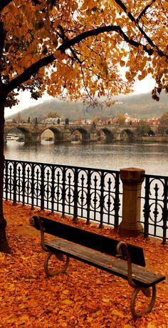 Famous Charles Bridge in Autumn Melancholy, Prague. Czech Republic   22 Reasons why Czech Republic must be in the Top of your Bucket List