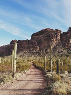 Outskirts of Tucson, AZ - maybe to marana valley - traveled a road like this every morning at 4am.