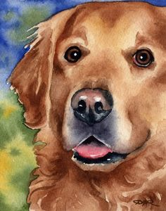 Stunning 'Golden Retriever' Artwork For Sale on Fine Art Prints Painting & Drawing, Watercolor Paintings, Watercolor Paper, Watercolors, Golden Retriever Art, Golden Retrievers, Graffiti Kunst, Watercolor Animals, Dog Portraits