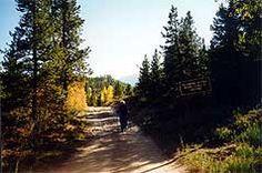 Salt Lick Trail - hiking in Summit County Colorado