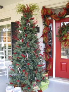 Holiday Front Door 2011