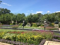 5. Kauffman Memorial Gardens - Kansas City