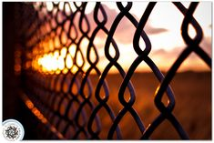 I'm currently a little obsessed with fence photos, especially ones with a shallow depth of field.