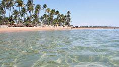 Bahia: Costa do Dendê e Costa do Cacau