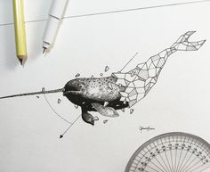 Geometric Beasts | Narwhal