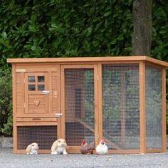 konijnenhok budget
