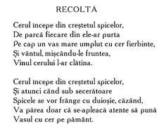 Recolta - Google Search