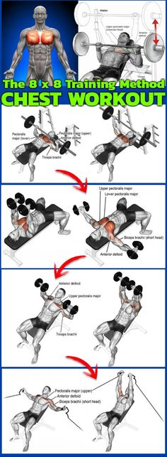 8 x 8 Method For Chest Training – Get Lean-Rid Fat This killer chest workout based on the approach is fantastic! The short rest periods will tax your cardiovascular system much in the way high … Chest Decline Bench Press 8 x Decline DB Flyes 8 x Killer Chest Workout, Chest Workout For Men, Chest Workouts, Lower Chest Exercises, Best Chest Workout Routine, Lower Chest Workout, Chest And Tricep Workout, Workout Routines, Workout Motivation