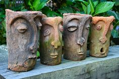 plants in outdoor pots - Google Search