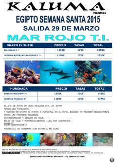 Egipto S. Santa Mar Rojo unica salida 29 mar ultimo minuto - http://zocotours.com/egipto-s-santa-mar-rojo-unica-salida-29-mar-ultimo-minuto/