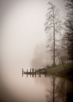 Foggy Morning. | Flickr - Photo Sharing!