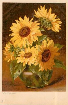 Sunflowers - cheerful, colorful, happy - State Flower of KS Sunflower Vase, Sunflower Pictures, Sunflower Garden, Watercolor Sunflower, Sunflower Design, Watercolor Flowers, Sunflowers And Daisies, Sun Flowers, Shabby Flowers