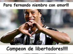 Los memes de Fernando Niembro luego de la final de la Copa Libertadores.
