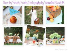 Rustic/Peach wedding.  Design by Panache and photography by Samantha Elizabeth Photography.  Negaunee, MI  www.shoppanacheboutique.com