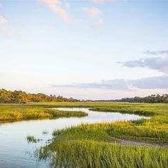 """No Monday blues here... just marshes and blue skies! : @jekyll_island #exploregeorgia"""