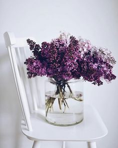Tradition: picking lilacs for Mother's Day