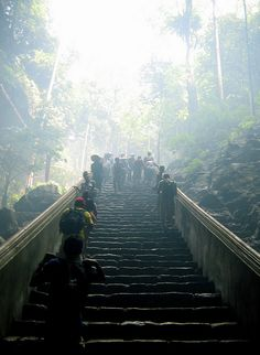 The steps to Perfume Pagoda, Vietnam (It's about one hour trip on the stairs!)