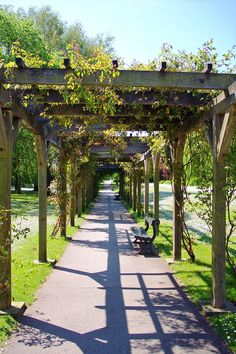 Avenue of rose covered arbours in Rowntrees Park, York Tuscan Courtyard, Visit York, Gazebo, Pergola, Rose Arbor, Garden Arbor, Growing Grapes, Garden Structures, Yorkshire