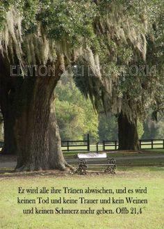 Himmelswort #40   Bei Gott Wirst Du Ruhe Finden. Er Gibt Dir Hoffnung,  Schutz Und Hilfe. Siehe Psalm 62, Verse 6 Und 7. Zusage, Ermutigung Und  Segeu2026