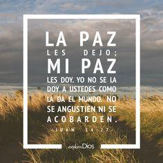 La #paz les dejo; mi paz les doy. Yo no se la doy a ustedes como la da el mundo. No se angustien ni se acobarden. -Juan 14:27 #ExploraDios