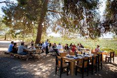 GoBajaCA | The Best Wines of Mexico's Burgeoning Baja Region - Wall Street Journal - WSJ.com