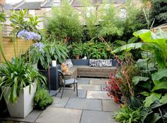 Deep, wide planters of bamboo placed along the back wall have transformed this urban backyard into an oasis. Layering plants with appealing foliage behind the seating area, will make it feel like you're sitting in a jungle.