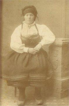 Julia Brokken Harstad. Norwegian-American Setesdal Bunad late 1800s Folk Costume, Costumes, Folklore, Norway, Culture, Homeland, American, Blood, Painting