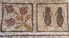 Pomegranate and sandal mosaics at Aya Trias Basilica, Sipahi Village, Cyprus.