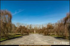 Sowjetisches Ehrenmal Treptow #Berlin #Deutschland #Germany #biancabuergerphotography #igersgermany #igersberlin #IG_Deutschland #IG_berlincity #ig_germany #shootcamp #pickmotion #berlinbreeze #diewocheaufinstagram #berlingram #visit_berlin #canon #canondeutschland #EOS5DMarkIII #5Diii #germany_fotos #berlinworld #Treptow #cemetery #Ehrenmal #trees #Bäume #sightseeing #bluesky