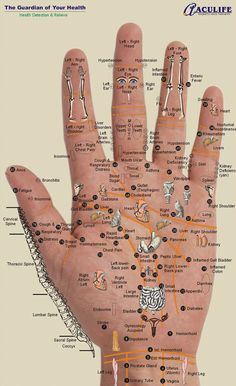 Great hand chart for Reflexology. To your health!  www.GetUNstuckNOW.org