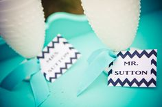 Tiffany Blue & Chevron theme  //  heather lynn photographie