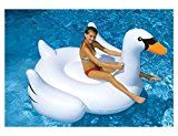 Giant Ride On Inflatable Swan by Swimline Possibly one of the coolest inflatable pool toys ever. This massive swan can be used as pool decor, just for fun or t Float Pool, Pool Lounge Float, Cool Pool Floats, Inflatable Pool Toys, Inflatable Float, Giant Inflatable, Inflatable Bouncers, Swimming Pool Toys, Pool Rafts
