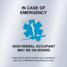 I made my own handmade version of this. I put in an envelope in my wallet a photo, age and explaining they are autistic and one is non verbal and the other can speak but wont speak in case of an emergency. I put contact numbers if I was ever non responsive to an EMT.