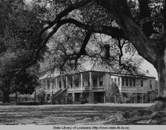 Oakland plantation home near Natchitoches Louisiana circa 1940 :: State Library of Louisiana Historic Photograph Collection