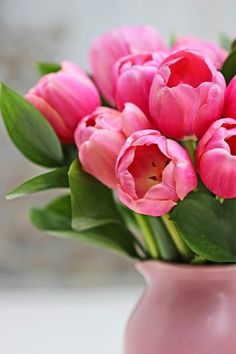 A Bunch for the Weekend-# Tulips and Ruscus-Ingrid Henningsson-Of Spring and Summer Pink Tulips, Tulips Flowers, Cut Flowers, Spring Flowers, Beautiful Flowers Photos, Beautiful Flower Arrangements, Exotic Flowers, Tulips Garden, Hanging Flowers