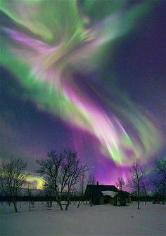 Skinner aurora boreal latino dating