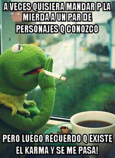 40 Mejores Imagenes De Meme De La Rana Rene Rana Rene Memes De