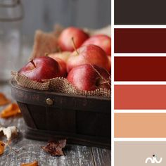 Apples Color Palette