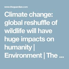 Climate change: global reshuffle of wildlife will have huge impacts on humanity | Environment | The Guardian