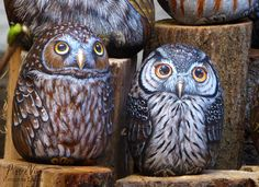 Painted Owls Rocks by Ernestina