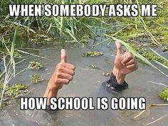 if somebody asks me how school is doing make a meme - Teacher Humor Humor Videos, Memes Humor, Stupid Funny Memes, Funny Relatable Memes, Funny Quotes, Hilarious, Teacher Humour, Funny Teacher Memes, Teacher Tired
