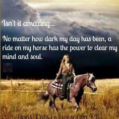 Isn't it amazing. No matter how dark my day has been, a ride on my horse has the power to clear my mind and soul. So true! Horse Girl, My Horse, Horse Love, Horse Barns, Horse Stalls, Horse Tack, Pretty Horses, Beautiful Horses, Yorkies