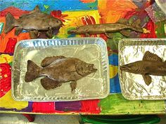 """Fine Lines: """"Awesome Fish!!"""" great tips for gyotaku printing!!!"""
