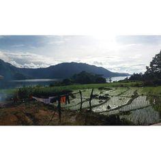 Lontung, Samosir Island, North Sumatera.