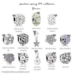 Image issue du site Web https://morapandora.files.wordpress.com/2016/01/pandora-spring-2015-preview-flowers.png