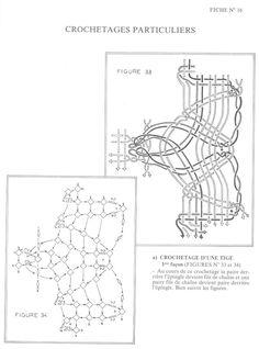 Duchesse - serena stella - Picasa Web Album