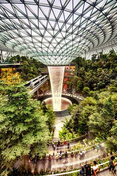 Singapore: New Jewel Changi Airport is a treat for jungle lovers [PHOTOS] Art Et Architecture, Futuristic Architecture, Sustainable Architecture, Beautiful Architecture, Singapore Changi Airport, Singapore Travel, Indoor Waterfall, Garden Waterfall, Airport Design